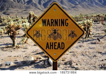 A warning bumble bee sign within the cholla cactus garden at Joshua Tree National Park in Joshua Tree California with the pinto mountains in the background.
