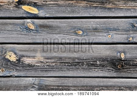 Horizontal texture of an old rustic pine board
