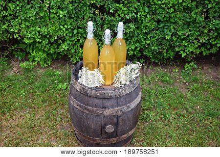 glass bottle with homemade  elderflower syrup  for refreshing