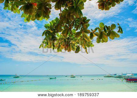 Boats In The Sea, Landscape. Island, Bohol. Philippines