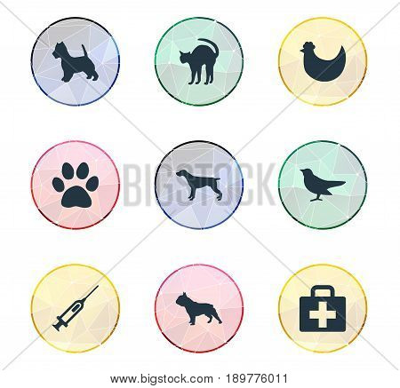 Vector Illustration Set Of Simple Animals Icons. Elements Pooch, Chicken, Ornitology And Other Synonyms Poultry, Puppy And Bird.
