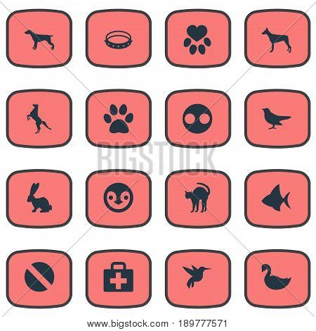 Vector Illustration Set Of Simple Zoo Icons. Elements Piglet, Watchdog, Pooch And Other Synonyms Piglet, Box And Hare.