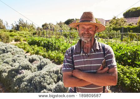 Portrait Of Mature Man Standing In Community Allotment