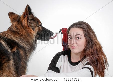 Human Girl Parrot And Dog Together