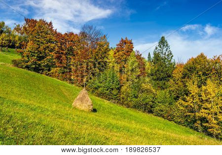 Mountain Rural Area In Autumn