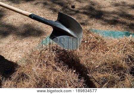 Shovel doing ground working. Garden subject view.