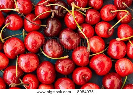 Ripe glossy sweet cherries with water drops scattered on dark blue background seamless pattern template vibrant colors top view close up