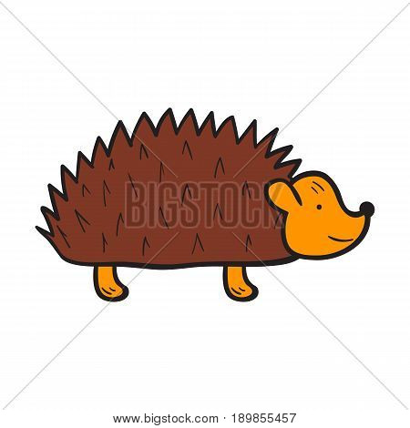 Vector cartoon illustration with hand drawn isolated brown hedgehog on white background. Vector cartoon animal icon. Hand drawn hedgehog for children book cover illustration. Zoo or forest animal