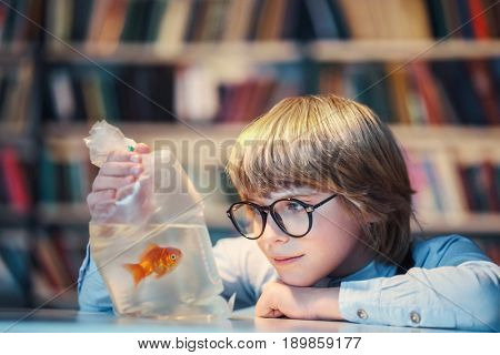 Little boy with a goldfish