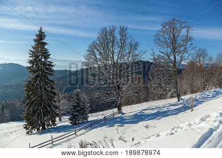 Winter landscape in mountains skiing resort of Bukovel