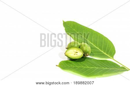 One green walnut cut and recumbent on two whole walnuts and two leaves on white background