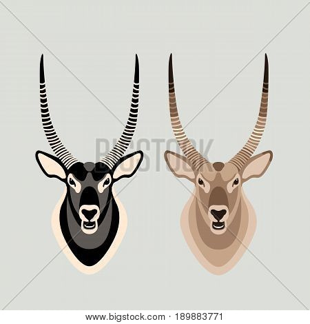 antelope head set vector illustration style Flat