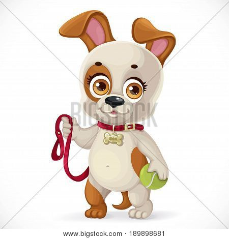 Cute cartoon little puppy holding a tennis ball and wants to walk isolated on a white background
