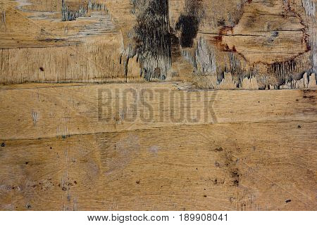 Old Weathered Plywood Background
