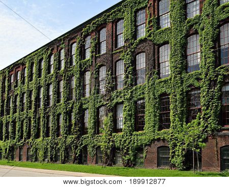 An old brown brick industrial building covered with lots of ivy