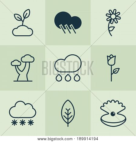 Harmony Icons Set. Collection Of Raindrop, Rain, Seashell And Other Elements. Also Includes Symbols Such As Wood, Sunflower, Pearl.