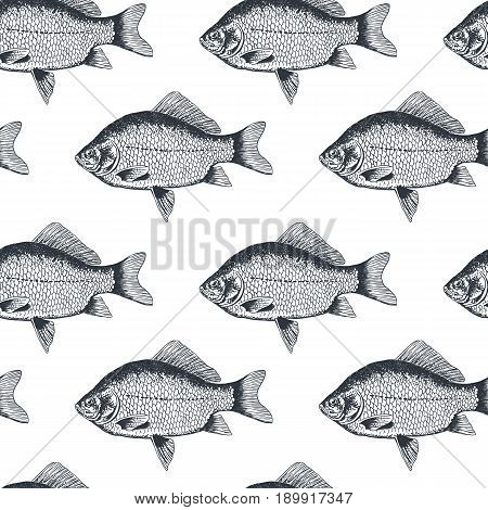 Seamless pattern of fish crucian carp, isolated black and white, side view, hand drawn