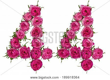 Arabic Numeral 44, Forty Four, From Red Flowers Of Rose, Isolated On White Background