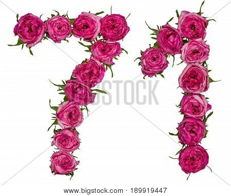 Arabic Numeral 71, Seventy One, From Red Flowers Of Rose, Isolated On White Background