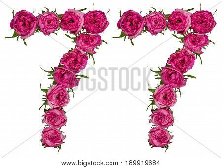 Arabic Numeral 77, Seventy Seven, From Red Flowers Of Rose, Isolated On White Background