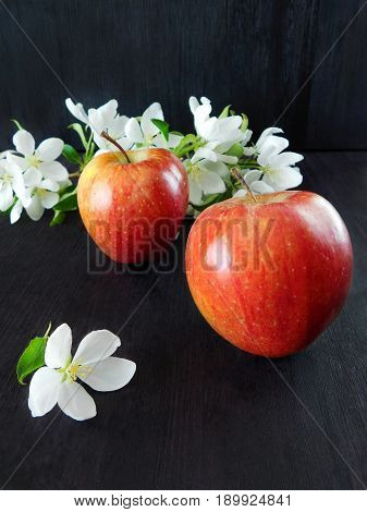 An apple from the blossom to the fruit. Concept of an apple growth