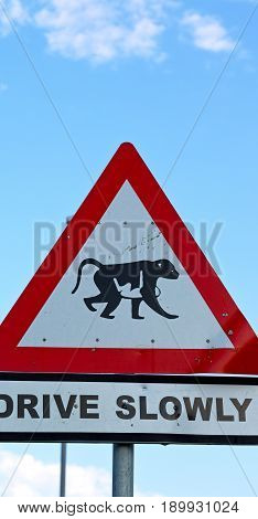 In South Africa Close Up Of The   Monkey Symbol