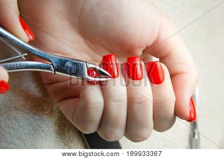 Nail Salon. Closeup Of Female Hand With Healthy Natural Nails Getting Nail Care Procedure. Closeup Hands Removing Cuticles With Professional Nail Tool, Metal Clippers. Beauty Manicure. High Resolution
