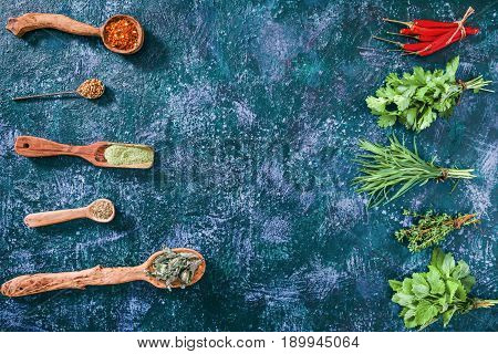 Chili peppers, cilantro, tarragon thyme and lemon balm in the forms of fresh herbs and of dried spices  over blue spotty background. Top view