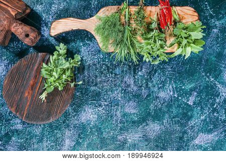 Fresh cilantro on the cutting board. Fresh lemon balm, dill, oregano, thyme, tarragon and chili peppers ready for cooking. Dark blue spotty background. Top view