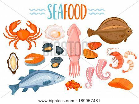 Set of seafod icons in cartoon style. Shellfish, oyster and crab, salmon, shrimp and octopus, prawn, mussel, flounder, sea fish, oysters and mussels, fish steak and caviar. Vector illustration.