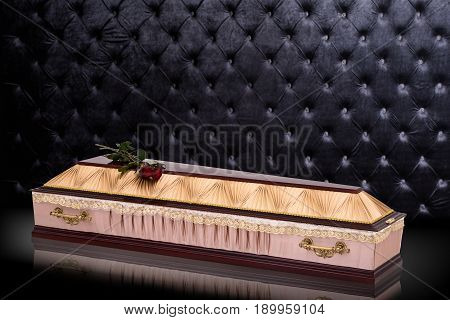closed wooden beige coffin and red roses covered cloth isolated on gray luxury background. casket with shadow on royal background. Ritual objects for burial. Surrender body dust of the earth. Christian funeral ritual