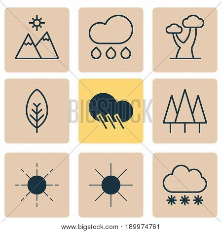 Harmony Icons Set. Collection Of Rain, Oak, Sunshine And Other Elements. Also Includes Symbols Such As Foliage, Leaf, Rain.