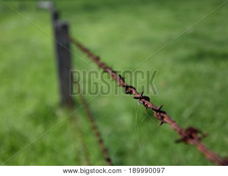 Closeup of rusty old fashioned corroded barbed wire. Rusty barbed wire in the countryside. Close-up of old rusty twisted barbed wire with green grass background.