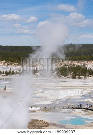 Porcelain Basin in Norris Geyser Basin of Yellowstone National Park photographed from above with tourists on the boardwalk below.