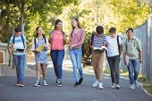 Smiling school kids walking on road in campus at school poster