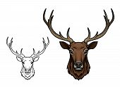 Deer or reindeer sketch vector icon. Wild forest stag or elk with antlers. Isolated wildlife fauna and zoology symbol or emblem for blazon for hunting sport team, nature adventure scout club poster