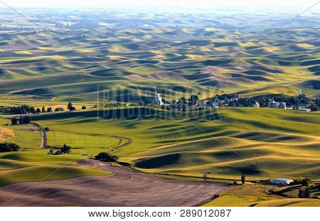 Rolling hills in Washington state at Palouse under sun set