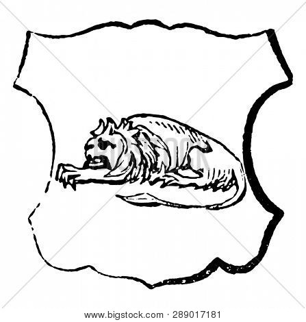 Lion Dormant are the French word for sleeping, vintage line drawing or engraving illustration.
