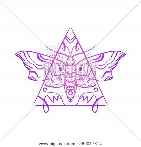 Contour Of Hawk Moth. Antistress Coloring. Butterfly Line Sketch