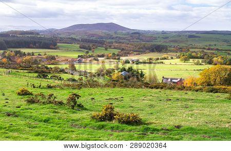Grassy Fields And Rural Farmland In Shropshire, England.