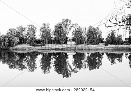 Trees On Die Eiland (the Island) Reflected At Sunset On The Orange River At Upington, A Town In The