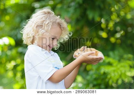 Child Playing With White Rabbit. Little Boy Feeding And Petting White Bunny. Easter Celebration. Egg