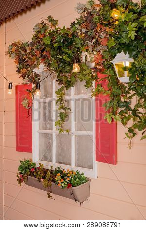 Ivy Wrapped Window Opening Of House. Wildlife Plants Home Window Climb. Retro Lantern In An Arch Of