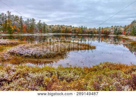 Autumn Wetland Landscape. Beautiful Fall Color Landscape Of The Northern Michigan Wetlands With A Fr