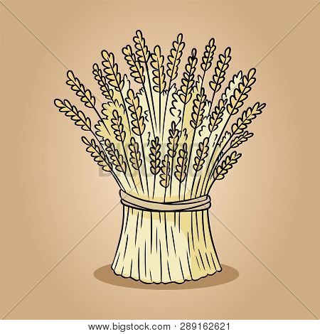 Sheaf Of Wheat Rye Sketch Doodle. Hand Drawn Vector Image