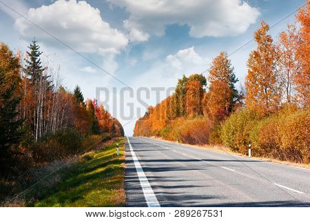 Amazing autumn landscape with road, orange larch forest and cloudy sky in background