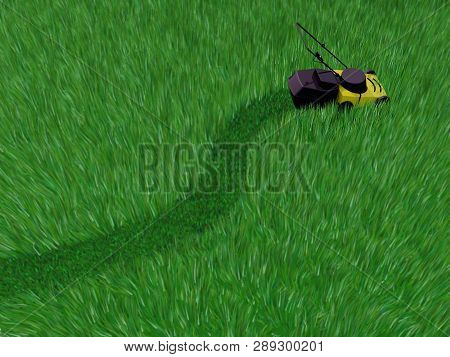 Grass Field Cut By Lawn Mower, 3d Illustration