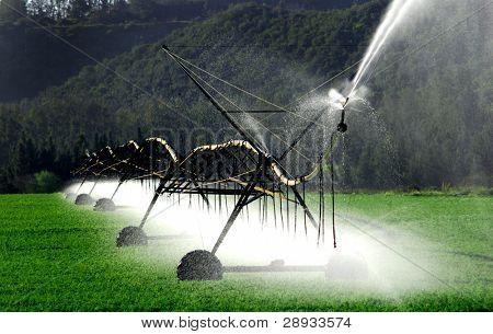 irrigation system working on a farm