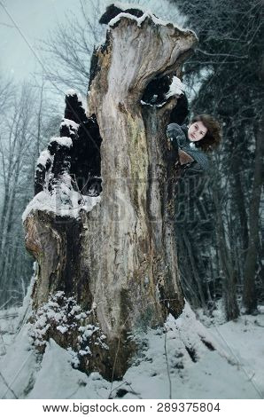 Girl Hiding In The Hollow Of An Old Tree