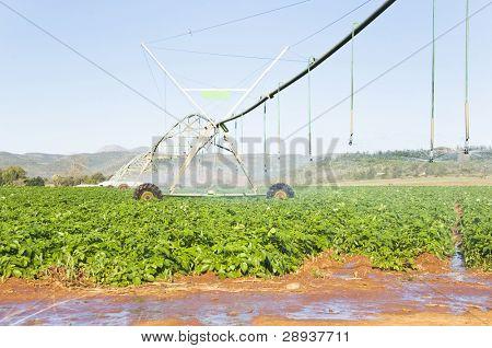 a Modern irrigation system watering a farm field